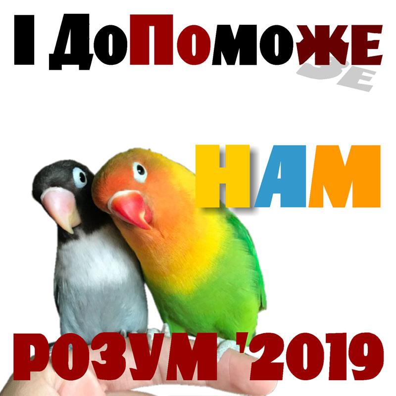 Екзит-пол 2019 (07)